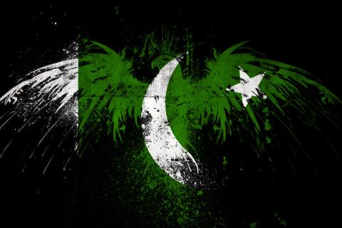 Screenshot №1 pro téma Pakistan Flag 480x320