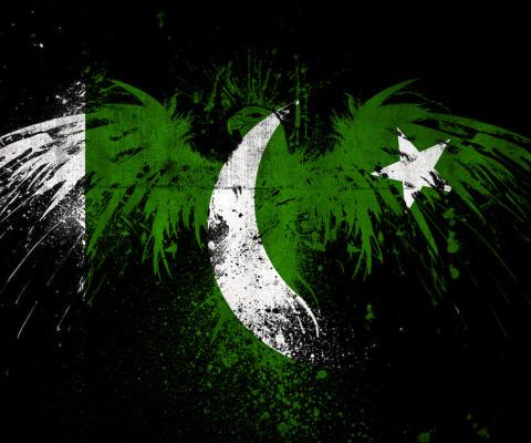 Screenshot №1 pro téma Pakistan Flag 480x400