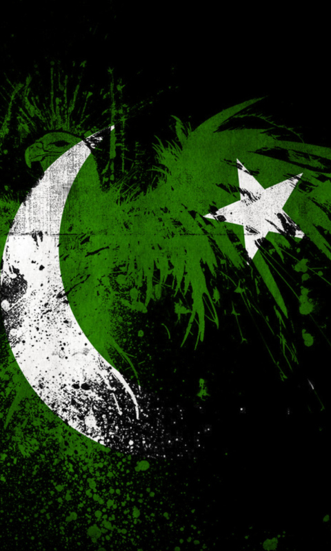 Screenshot №1 pro téma Pakistan Flag 480x800