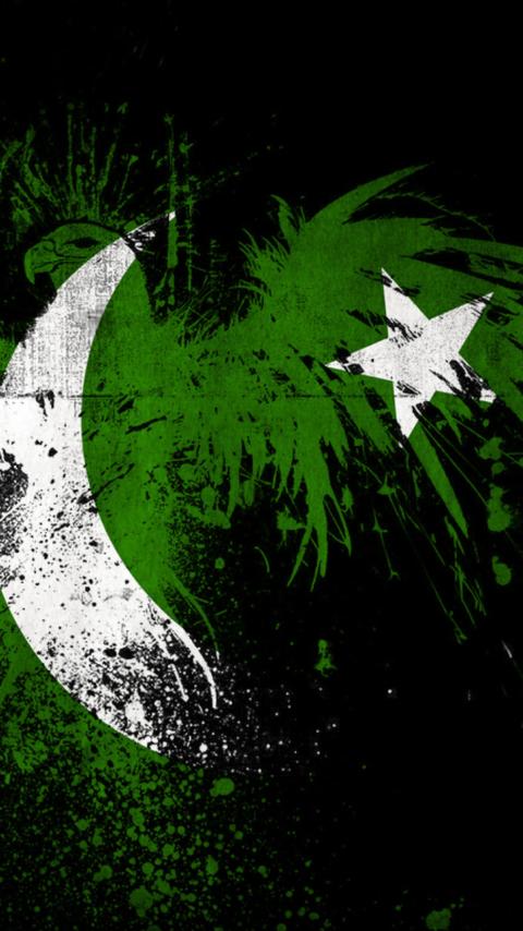 Screenshot №1 pro téma Pakistan Flag 480x854