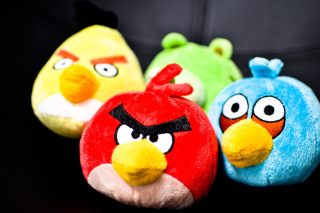 Free Plush Angry Birds Picture for Android, iPhone and iPad