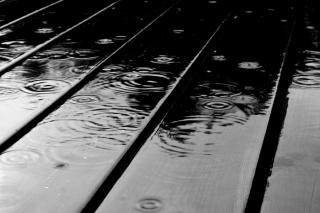 Black Rain - Fondos de pantalla gratis Stub device