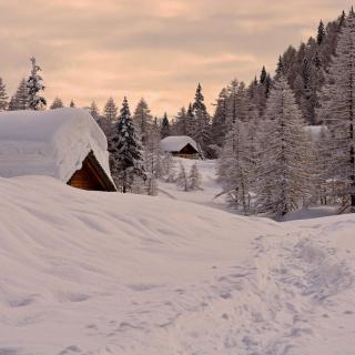 Snowfall in Village - Obrázkek zdarma pro iPad 3