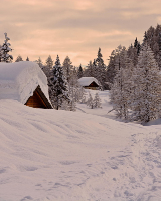 Snowfall in Village - Obrázkek zdarma pro 480x854