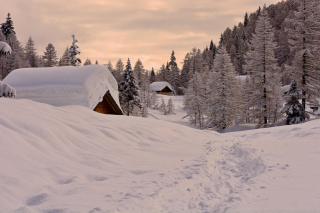 Snowfall in Village - Obrázkek zdarma pro Samsung Galaxy S6