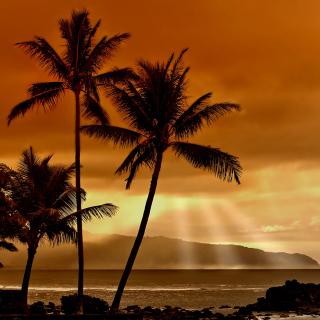 Acapulco Sunset - Obrázkek zdarma pro 208x208