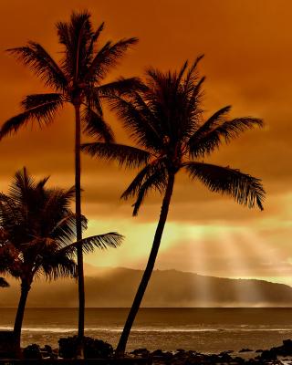 Acapulco Sunset - Obrázkek zdarma pro Nokia X1-00