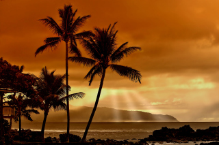 Acapulco Sunset Wallpaper for Android, iPhone and iPad