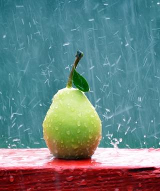 Green Pear In The Rain - Obrázkek zdarma pro Nokia X3-02