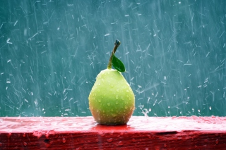 Green Pear In The Rain - Obrázkek zdarma pro Android 480x800