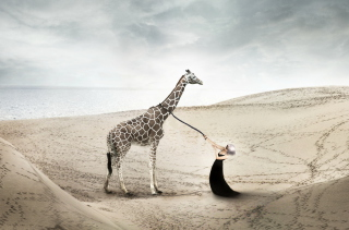 Girl And Giraffe Background for Android, iPhone and iPad