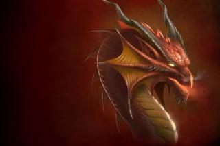 Dragon Head - Obrázkek zdarma pro 1024x768