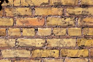 Brick Wall - Obrázkek zdarma pro 1600x900