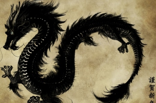 Chinese Black Dragon Wallpaper for Android, iPhone and iPad