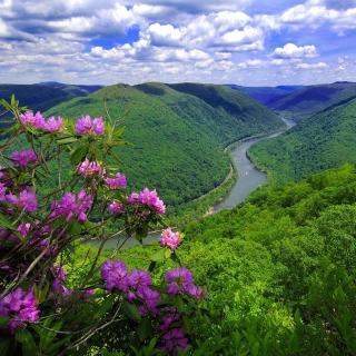 Beautiful Mountain River - Obrázkek zdarma pro 128x128