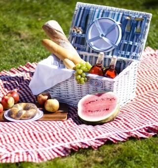 Summer Picnic - Obrázkek zdarma pro 1024x1024