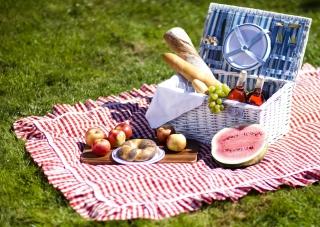 Summer Picnic - Obrázkek zdarma pro 1280x960