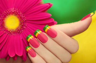 Colorful Nails - Obrázkek zdarma pro Android 320x480