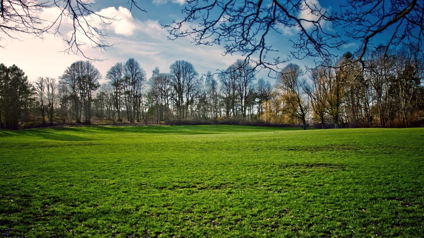 1366x768 green creative spring - photo #14