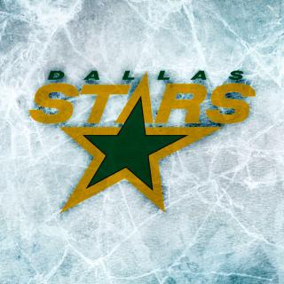 Dallas Stars - Obrázkek zdarma pro iPad 3