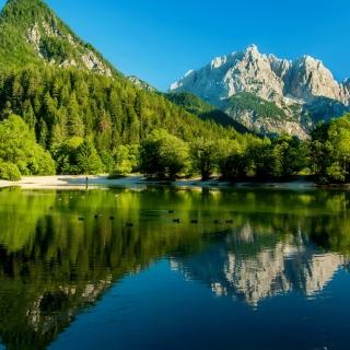 Lake Jasna, Slovenia - Obrázkek zdarma pro 208x208