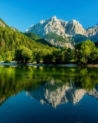 Lake Jasna, Slovenia - Obrázkek zdarma pro Nokia C1-00