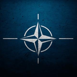 Flag of NATO - Obrázkek zdarma pro iPad mini 2