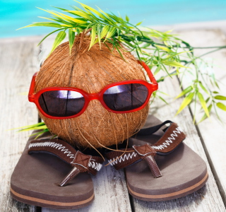 Funny Coconut - Obrázkek zdarma pro 1024x1024