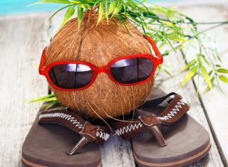 Funny Coconut - Obrázkek zdarma pro Samsung Galaxy Note 2 N7100