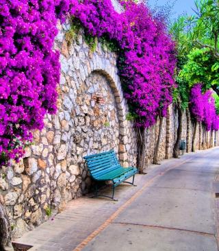 Bench And Purple Flowers - Obrázkek zdarma pro Nokia C5-03