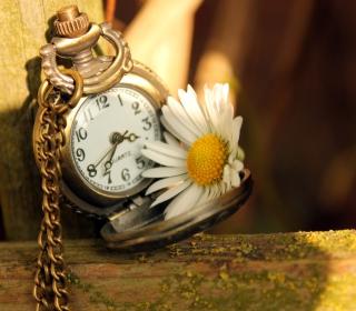Vintage Watch And Daisy - Obrázkek zdarma pro 128x128