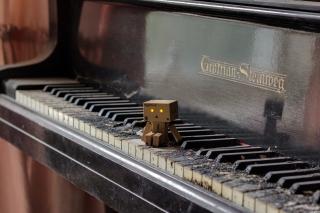 Danbo Pianist - Obrázkek zdarma pro Samsung Galaxy Tab 3