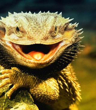 Lizard Dragon - Obrázkek zdarma pro 640x960