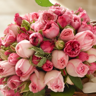 Bouquet of pink roses - Obrázkek zdarma pro 1024x1024