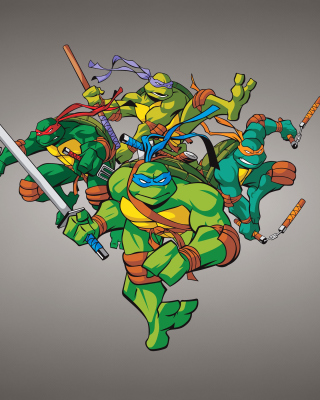 TMNT Picture for Nokia N8