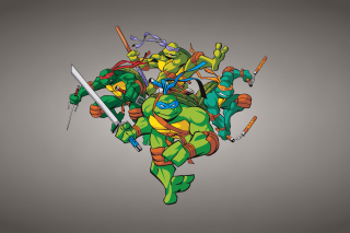 TMNT Background for Sony Ericsson XPERIA X8