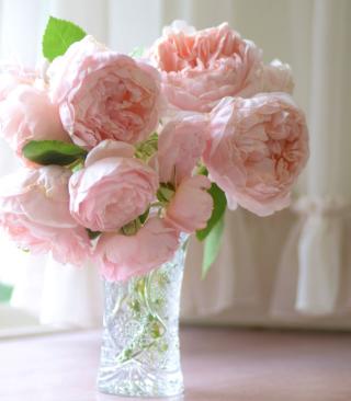 Soft Pink Peonies Bouquet - Obrázkek zdarma pro Nokia C-5 5MP