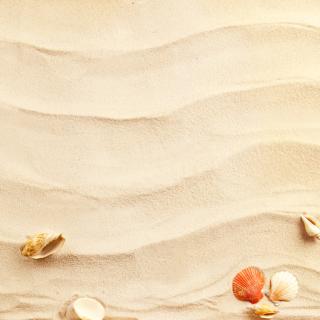 Sand and Shells - Obrázkek zdarma pro iPad