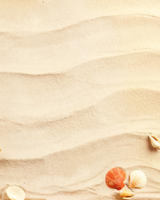 Sand and Shells - Obrázkek zdarma pro 240x432