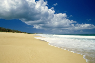 Обои Sunny Beach для телефона