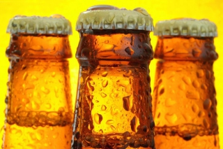 Cold Beer Bottles Wallpaper for Android, iPhone and iPad