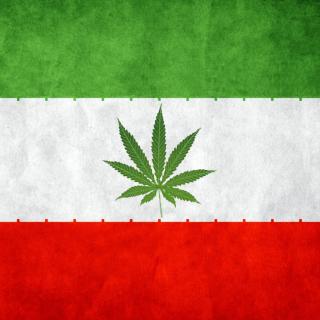 Iran Weeds Flag - Obrázkek zdarma pro iPad 3