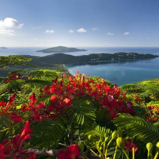 Ocean Photography on Equator - Obrázkek zdarma pro iPad