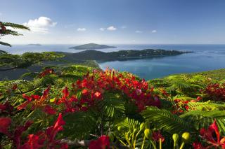 Ocean Photography on Equator - Obrázkek zdarma pro 1080x960