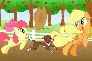 My Little Pony - Fondos de pantalla gratis para 220x176