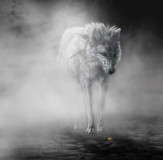 Lonely Wolf - Obrázkek zdarma pro iPad mini