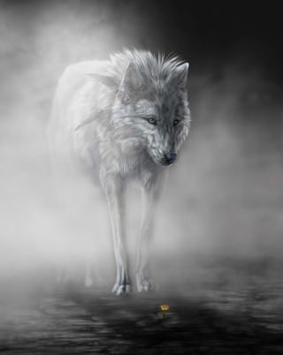 Lonely Wolf - Obrázkek zdarma pro iPhone 5