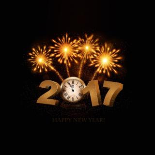 2017 New Year fireworks - Obrázkek zdarma pro iPad mini