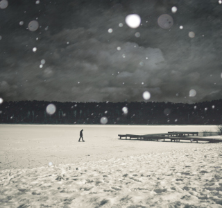 Alone Winter - Obrázkek zdarma pro 1024x1024