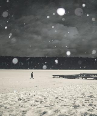 Alone Winter - Obrázkek zdarma pro Nokia Lumia 520